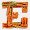 moehren-e-vom-alphabet