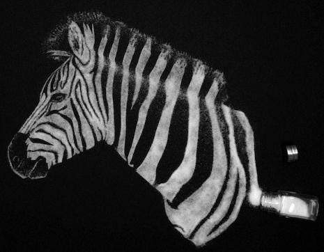 salz-zebra-kunst